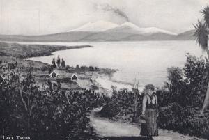 Lake Taupo Lady Carrying Basket Antique New Zealand Postcard