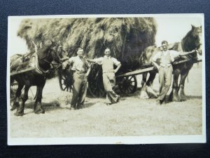 Farming Country Life SHIRE HORSE & COLLECTING THE HAY - Old RP Postcard