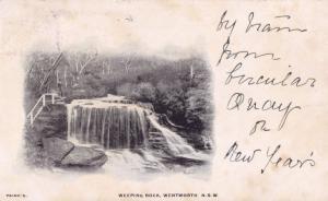 Weeping Rock 1904 Wentworth Australia Old Postcard