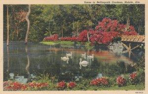 MOBILE, Alabama, 1930-40s; Scene in Bellingrath Gardens