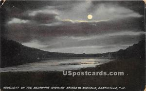 Moonlight on the Delaware Barryville NY 1913