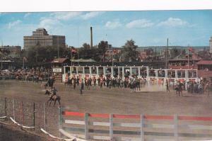 CALGARY, Alberta, Canada, 40-60's; The Rodeo, Calgary Stampede