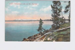 ANTIQUE POSTCARD NATIONAL STATE PARK YELLOWSTONE LAKE AND MT SHERIDAN #5