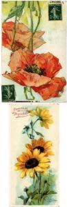 ILLIUSTRATEUR C.KLEIN FLEUR & FRUIT 14 CPA