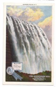 Niagara Wall Papers Advertising Postcard NY Curteich