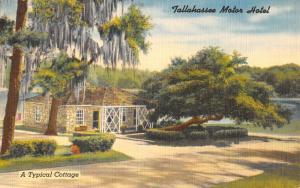 Tallahassee Florida Motor Hotel Street View Antique Postcard K49965