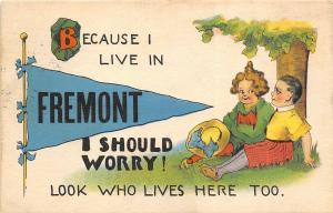 Fremont Ohio 1914 Postcard Boy Girl Under Tree Pennant