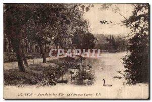 Old Postcard Lyon Park Tete d'Aux Swans Corner