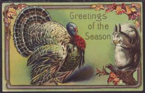 Greetings of the Season,Thanksgiving,Turkey,Squirrel