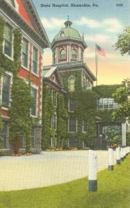State Hospital, Shamokin, Pa unused linen Postcard