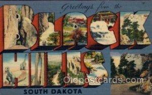 Black Hills, South Dakota Large Letter Town Unused