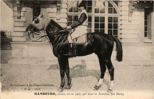 PC CPA HAMBOURG alezan chestnut HORSES SPORT (a14285)