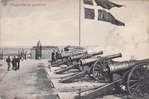 Denmark Flagbatteriet Saluterer
