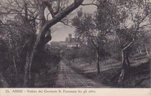 Italy Assisi Perugia Veduta Del Convento Saint Francesco Fra Gli Ulivi