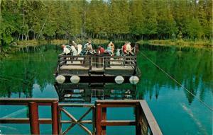 Kitch-iti-k-pi Palms Brook State Park Manistique Michigan Big Spring Postcard