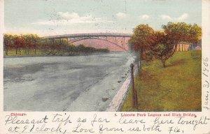 Lincoln Park Lagoon and High Bridge, Chicago, Illinois, 1906 Postcard, Used