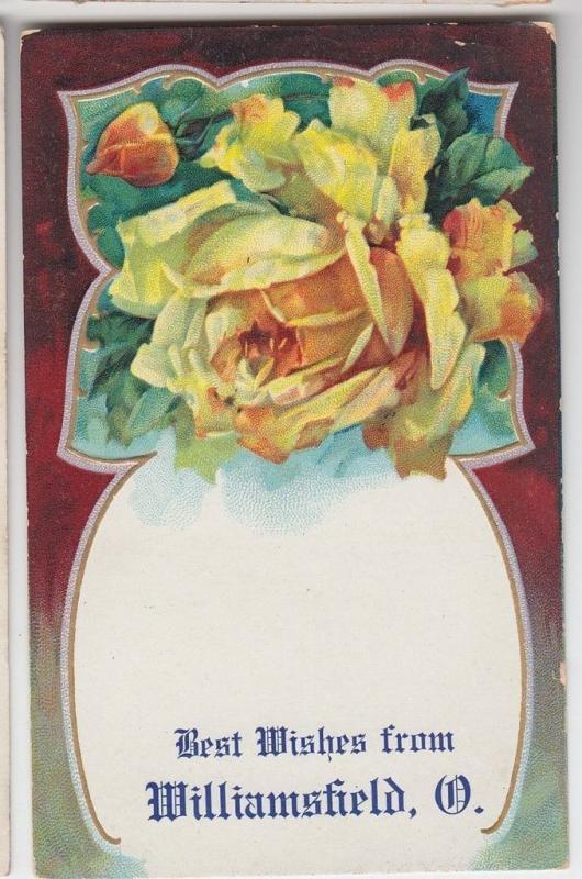 1909 WILLIAMSFIELD Ohio GREETING Postcard Ashtabula County