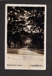BWI Saman Tree Ave Trinidad British West Indies Postcard Real Photo RPPC
