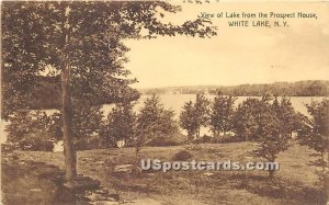 View of Lake from the Prospect House - White Lake, New York