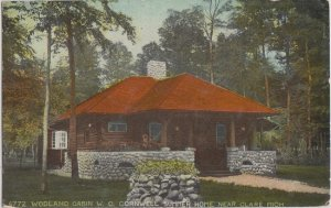 CLARE MI -  WOODLAND CABIN / W C CORNWELL SUMMER HOME 1910s view