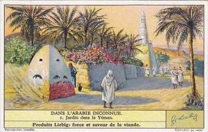 Liebig Vintage Trade Card S1307 Undiscovered Arabia 1935 No 1 Jardin dans le ...