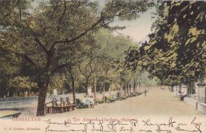 GIBRALTAR, The Alameda Gardens (Saloon), 00-10s