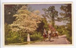 Pinehurst, North Carolina, PU-1950