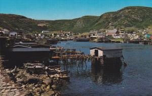 Petty Harbour, PETTY HARBOUR, Newfoundland, Canada, 40-60´