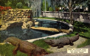 Texas El Paso San Jacinto Plaza The Alligator Pool