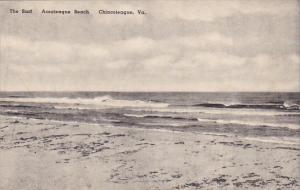 The Surf Assateague Beach Chincoteague Virginia Albertype