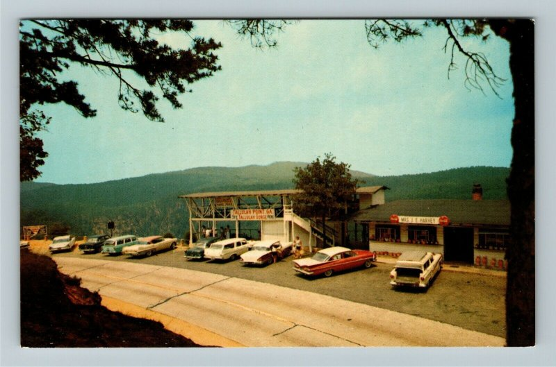 Tallulah Point GA- Georgia, Northeast Virginia, Vintage Chrome Postcard