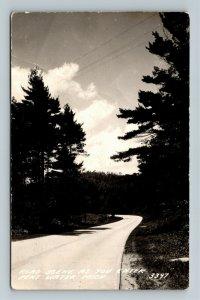 RPPC of Pent Water MI-Michigan, Road Scene As You Enter, Postcard