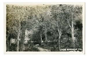 1904-1920's ERA RPPC*LYON SPRINGS CALIFORNIA*VENTURA COUNTY*TREES*DIRT PATH