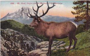Oregon And He Monarch Of The Mountain Mount Hood Oregon