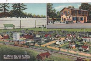 Ohio Mitiwanga On Lake Erie Midget City and The Patio Curteich