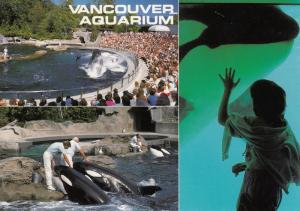 Killer Whales , 3-view postcard , VANCOUVER , B.C. , Canada , 50-70s #1