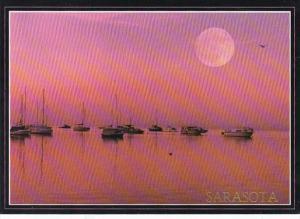 Florida Sarasota Moon Over The Marina