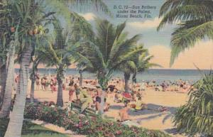 Florida Miami Beach Sun Bathers Under The Palms Curteich