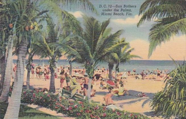 Florida Miami Beach Sun Bathers Under The Palms Curteich