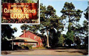 Cambria, California Postcard CAMBRIA PINES LODGE Roadside Hotel SLO County 1960s