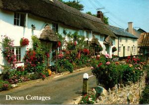 England Devon Cottages At Branscombe