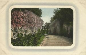 bermuda, Entrance to Mt. Langton, Governors Residence (1910s) Embossed