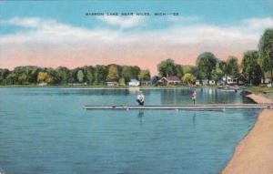 Michigan Barron Lake Near Niles