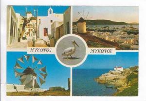 Multivew: Windmills, Myconos, Greece 1950-70s