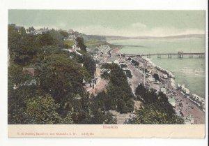 UK England Shanklin Isle of Wight Bathing Sands Vtg T E Porter Postcard c 1910