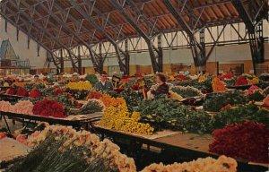 Netherlands Aalsmeer Interior Flower Auction Postcard