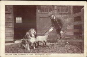 Hartford CT Keeney Park - Man w/ Lamb & Collie Dog c1910 Postcard