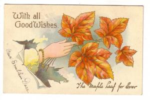 Hand with Leaves, The Maple Leaf Forever, National Series, West Dublin Nova S...