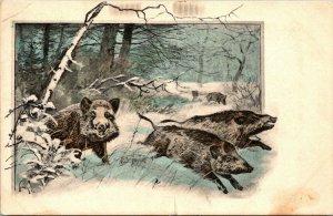 Vintage Postcard Winter Scene Wild Boar 1910 Redding California Made in Germany