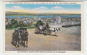 P2017 old postcard horse wagons only allowed at top of mt. royal montreal canada